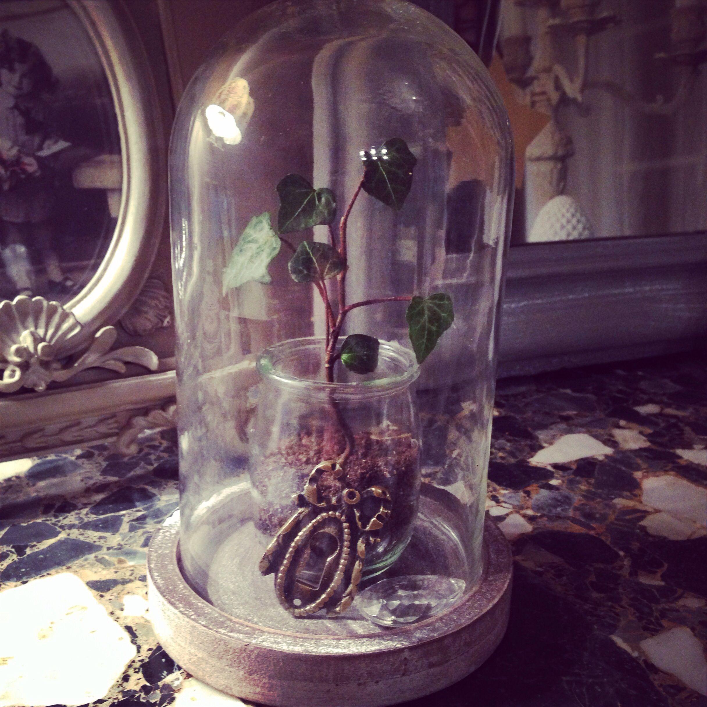 Globe de verre trouvé chez CASA