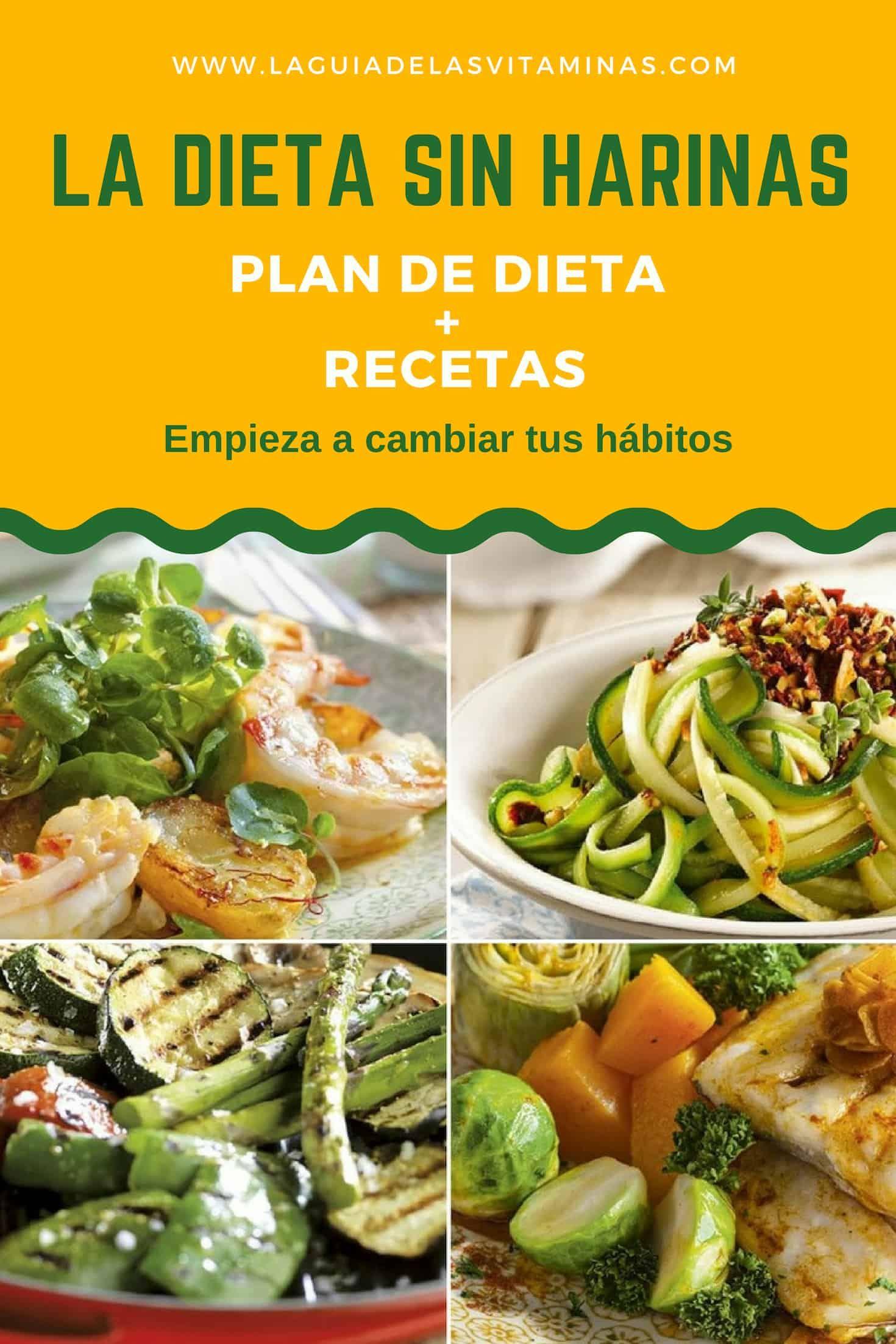 Recetas sanas para hacer dieta