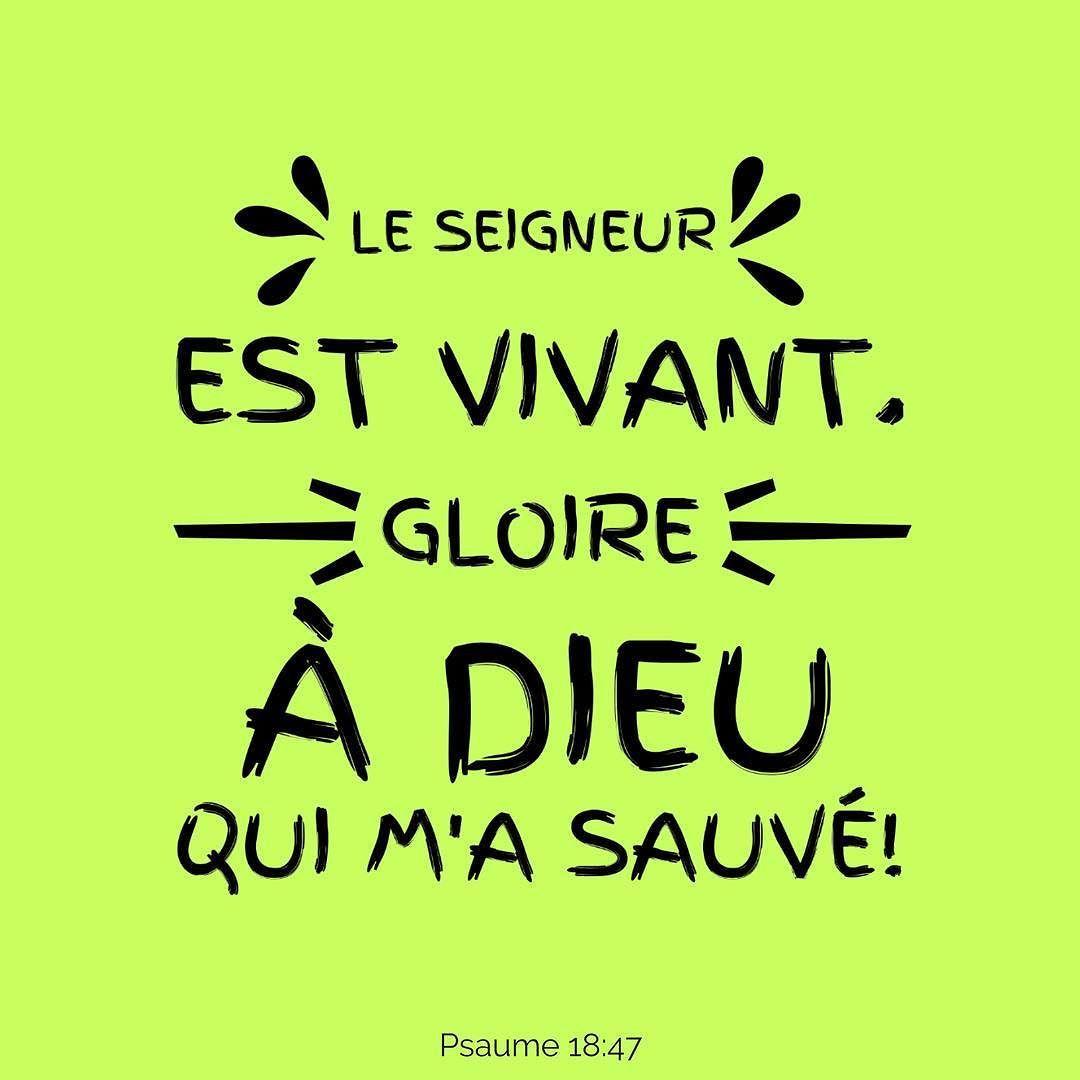 La Bible Verset Illustre Psaumes 18 47 Le Seigneur Est Vivant Gloire A Dieu Qui M A Sauve