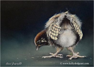 Kelly Dodge Nature And Wildlife Art Original Paintings Wildlife Art Bird Artwork Original Paintings