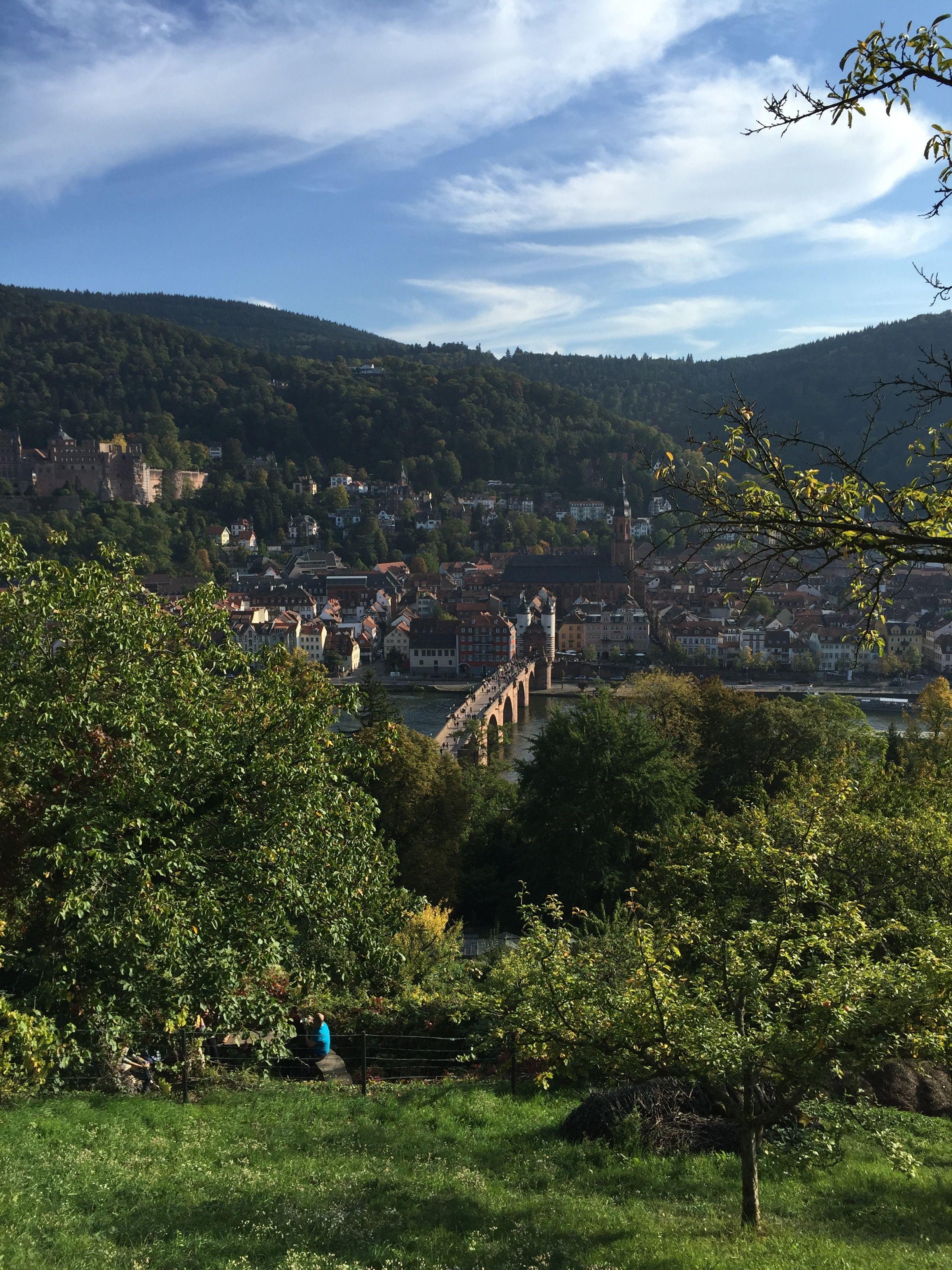 Blick vom Philosophenweg auf die Heidelberger Altstadt/Alte Brücke.