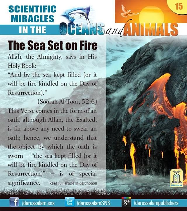 "The Sea Set on Fire  Allah, the Almighty, says in His Holy Book: ""And by the sea kept filled (or it will be fire kindled on the Day of Resurrection)."" (Soorah Al-Toor, 52:6) v #ScientificMiraclesInTheOceansAndAnimals  #DarussalamPublishers #IslamicEBooks #AmazonKindle  #KindleStore #BarnesAndNoble"