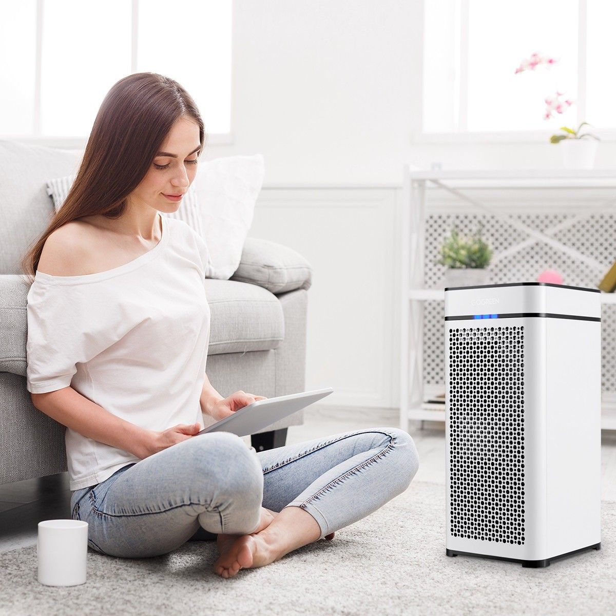 430 sq.ft True HEPA Filter Activated Carbon Air Purifier
