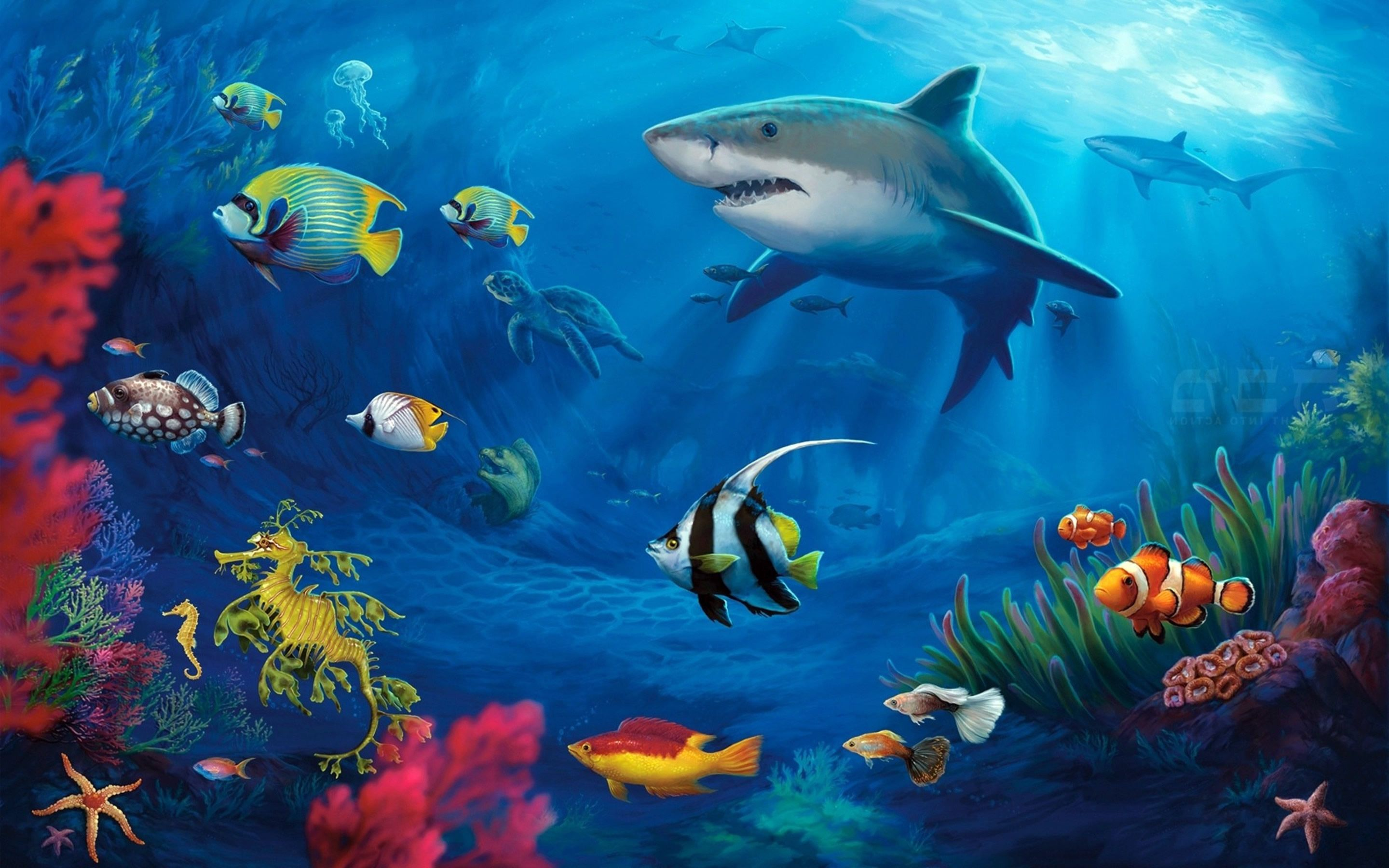 Underwater Paintings of Sharks Yahoo Image Search Results