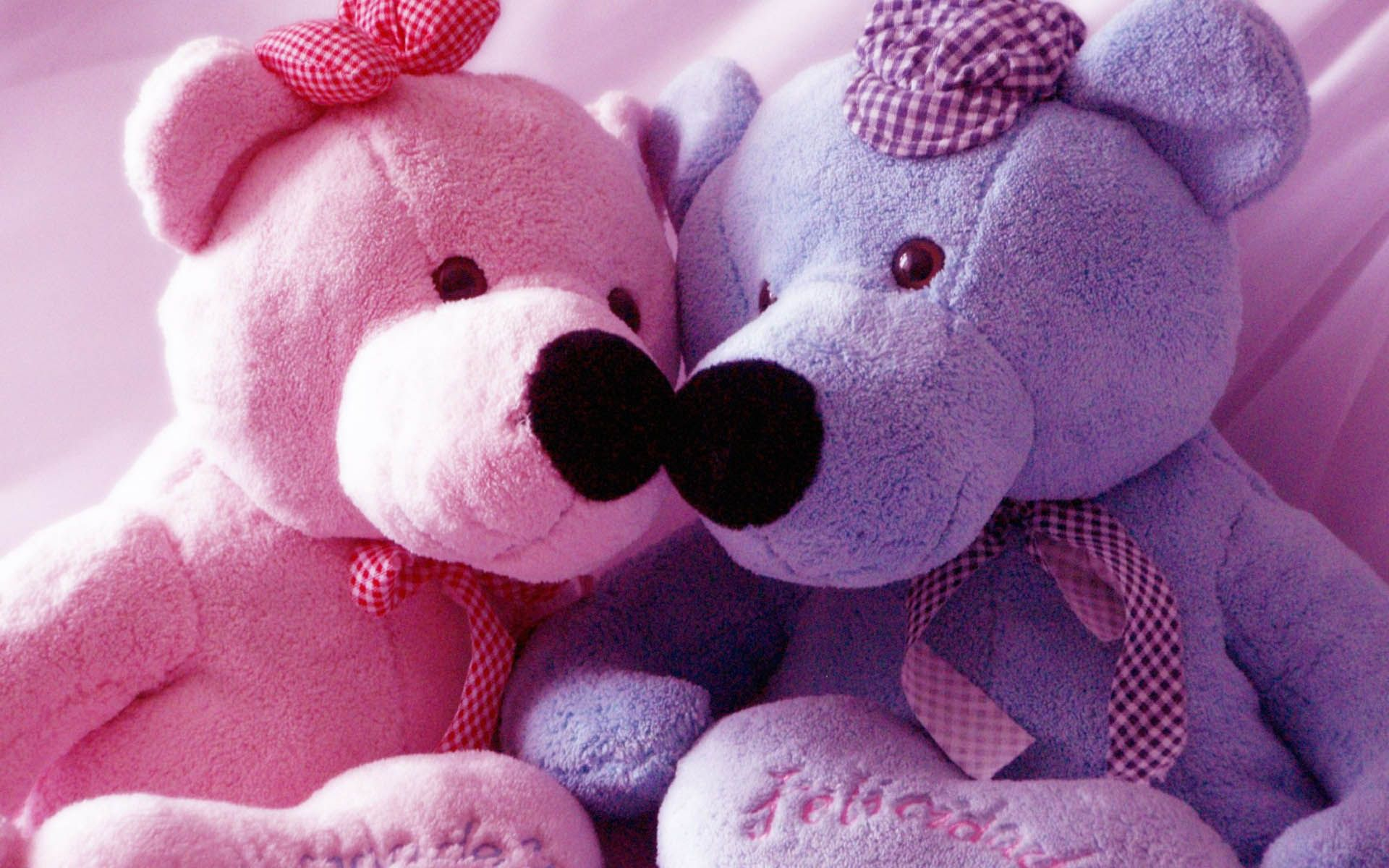 pink and blue teddy