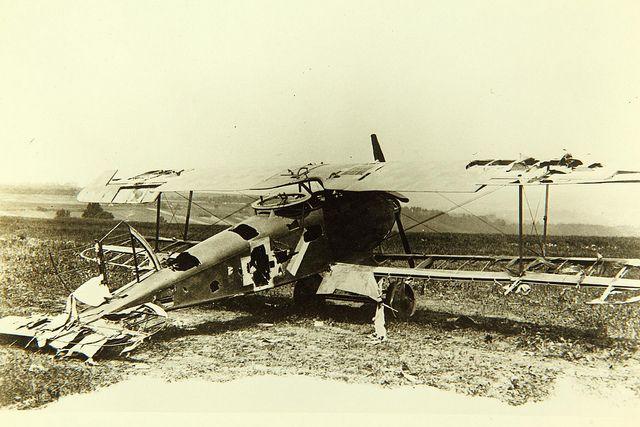 halberstadt cl ii air and space museum world war i ww1 aircraft pinterest