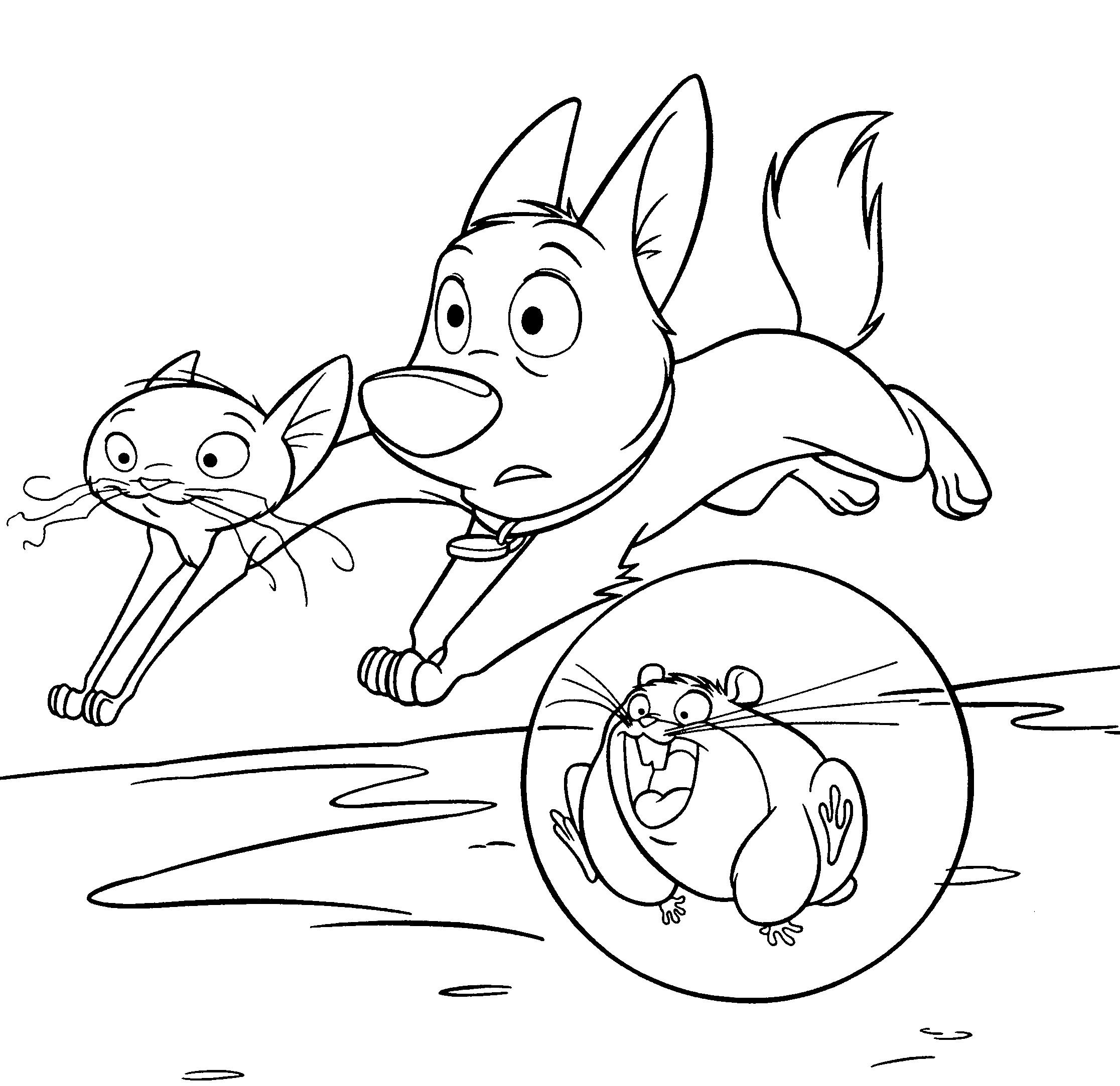 Bolt And Cat Jumping Coloring Page
