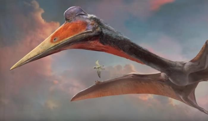 #prehistoriccreatures