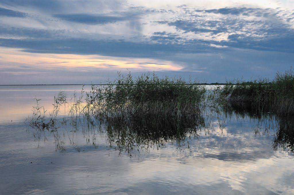 Чудское озеро | Фото пейзажа, Озера и Фотографии