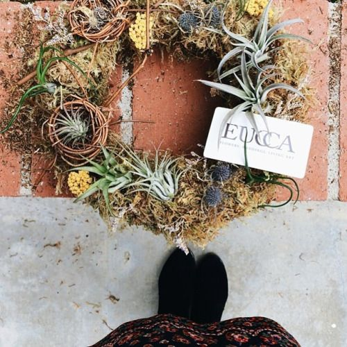 Air plant wreath with little nests
