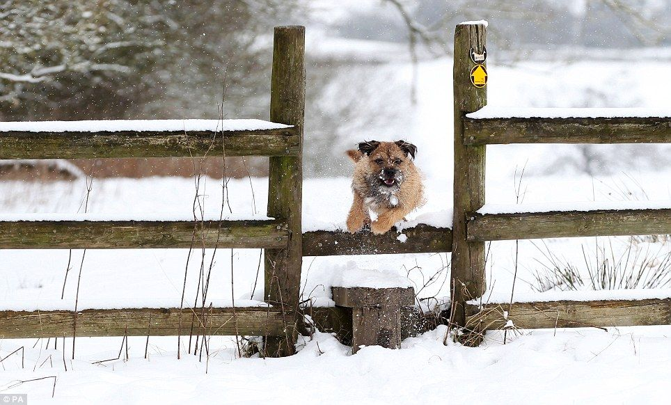 Big Freeze Will Last Until Friday When The Big Thaw Brings Floods