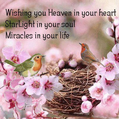 Wishing You Heaven In Your Heart  Starlight In Your Soul, Miracles in Your Life... <3