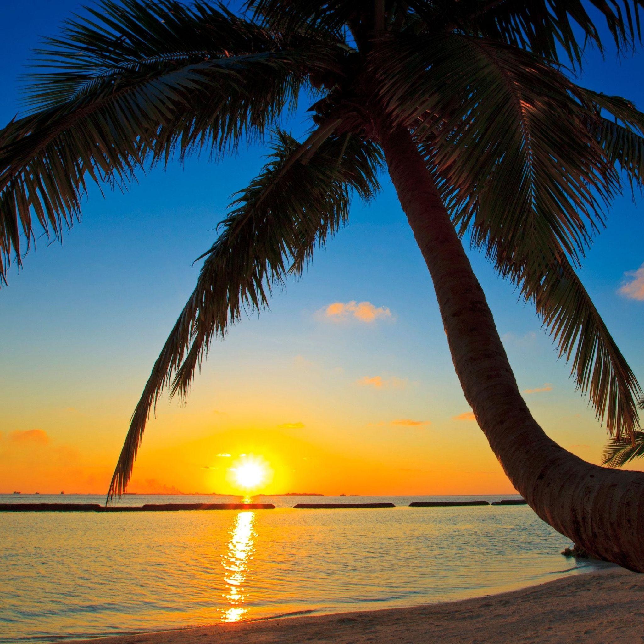 R sultat de recherche d 39 images pour plage coucher de - Fond ecran coucher de soleil sur la mer ...