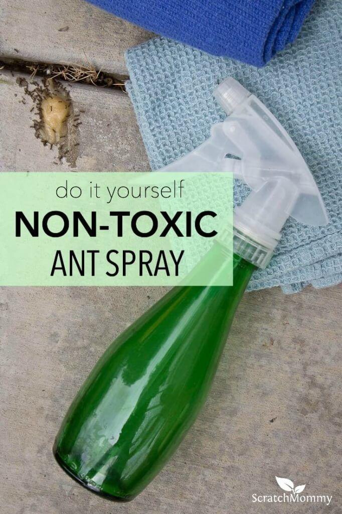 Diy non toxic ant spray recipe ant spray ant problem and bye bye - Ameisen garten loswerden ...