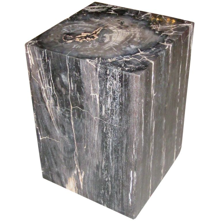 petrified wood cube side or coffee table | petrified wood, cube and