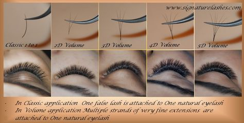 russian volume eyelash extension style chart - Google Search