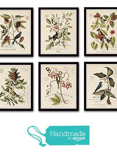 09 Art Home Wall Art Print Set of 4 Prints UNFRAMED Vintage Botanical Floral No