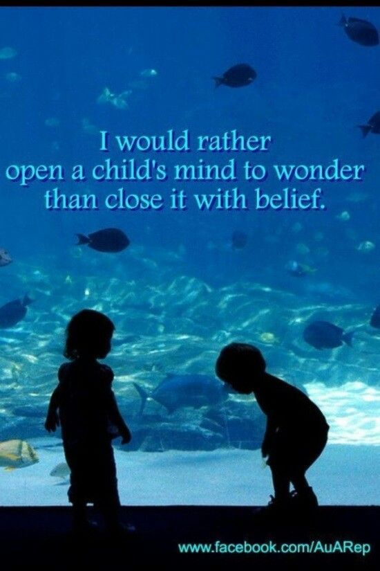 Indoctrination Vs Wonder And Curiosity