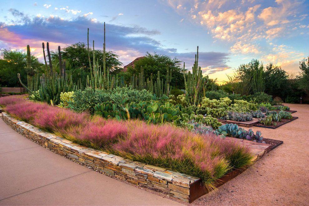 Desert Botanical Garden Public garden, Desert botanical