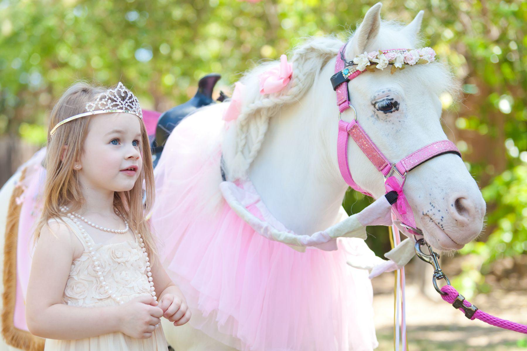 Lmao He Needs To Hire Princess Pony Princess Party Pony Party Theme Kids Birthday Theme Kids Birthday Party