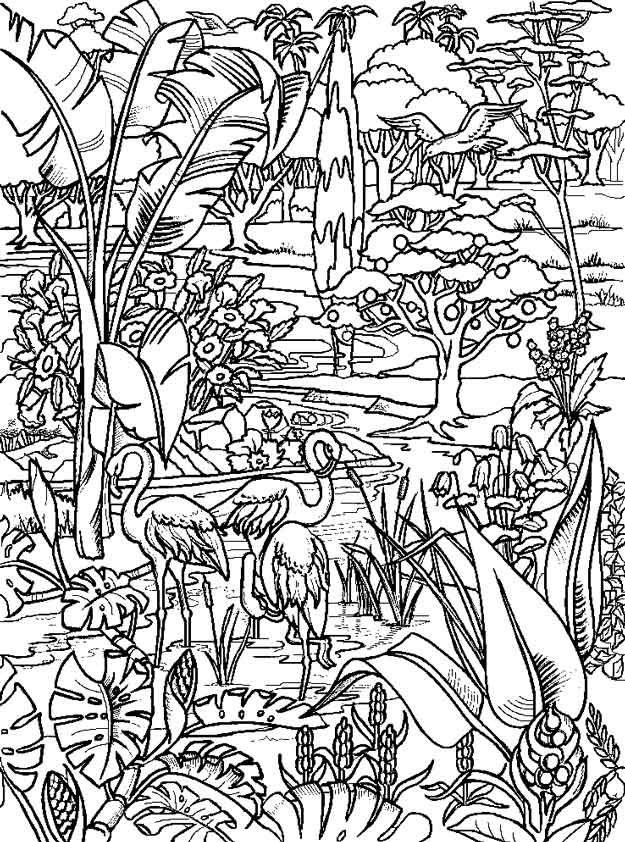 hof van eden  enchanted forest coloring book coloring
