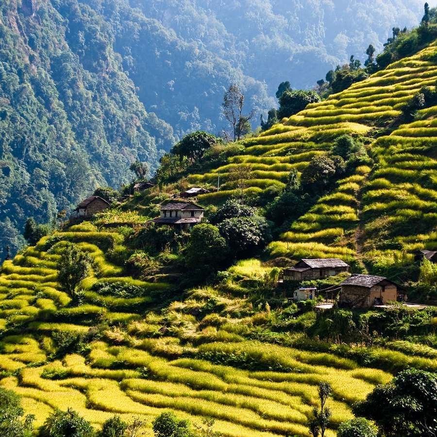 Top 17 Enormous Terraced Rice Fields