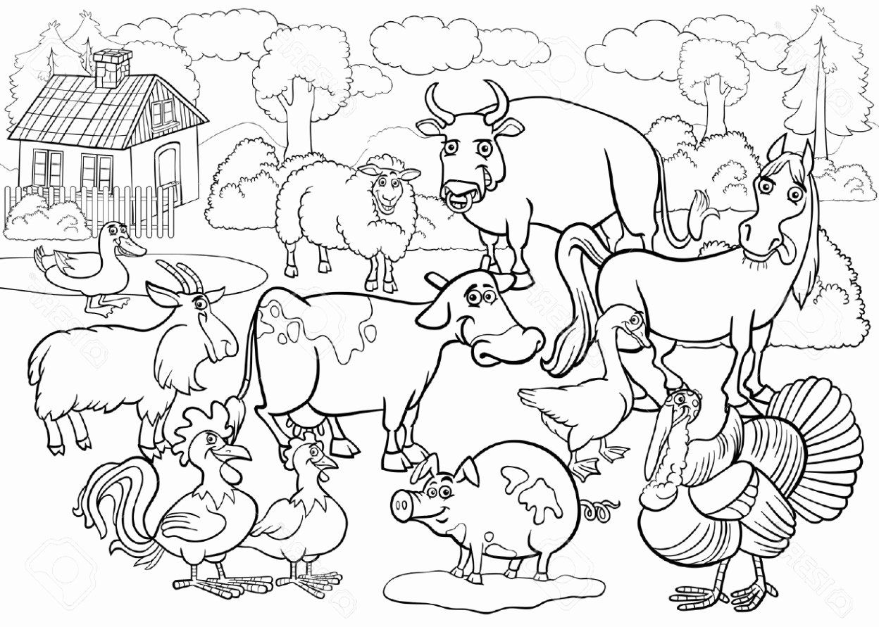 Zoo Coloring Activities Fresh Zoo Coloring Pages Farm Animal Coloring Pages Zoo Coloring Pages Zoo Animal Coloring Pages