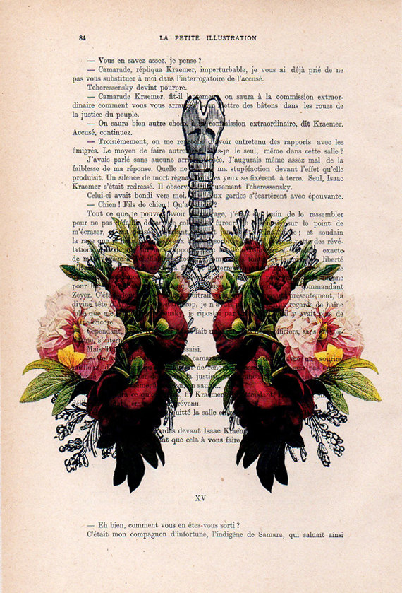 peony lungs anatomy print on 1900s antique page the genuine antique paper i use comes from 1900s original antique french book page the page is