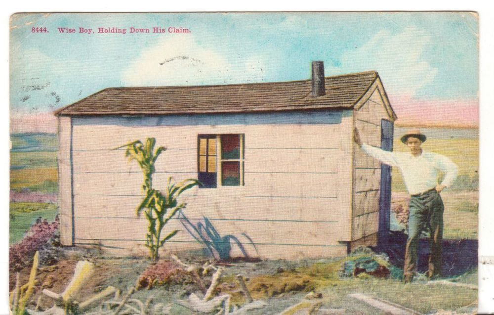 1909 MT Postmarked Postcard Wise Boy Holding Down his Claim little Shack