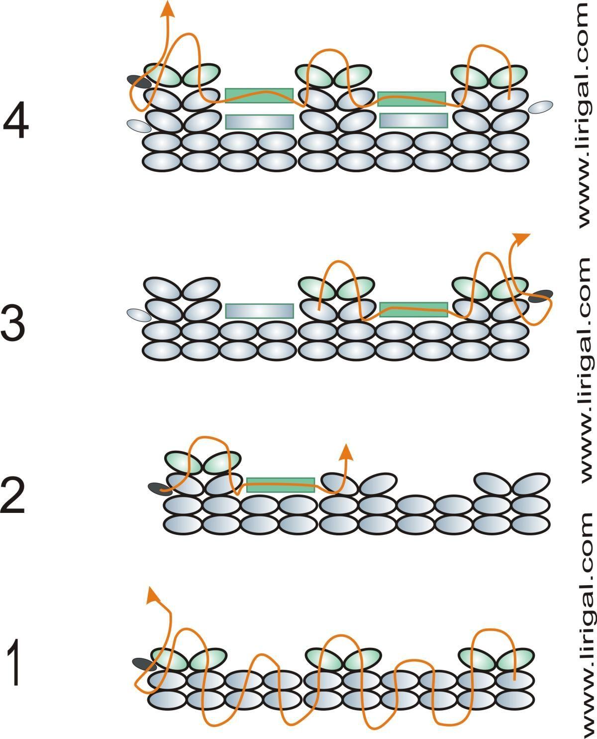 Схемы плетения из бисера браслеты картинки