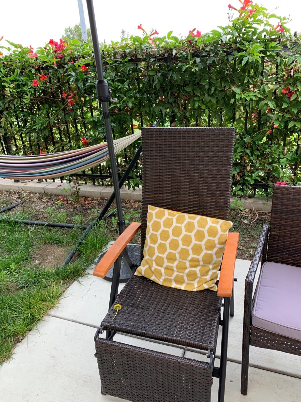 Adjustable Chaise Lounge Chair Folding Reclining Beach