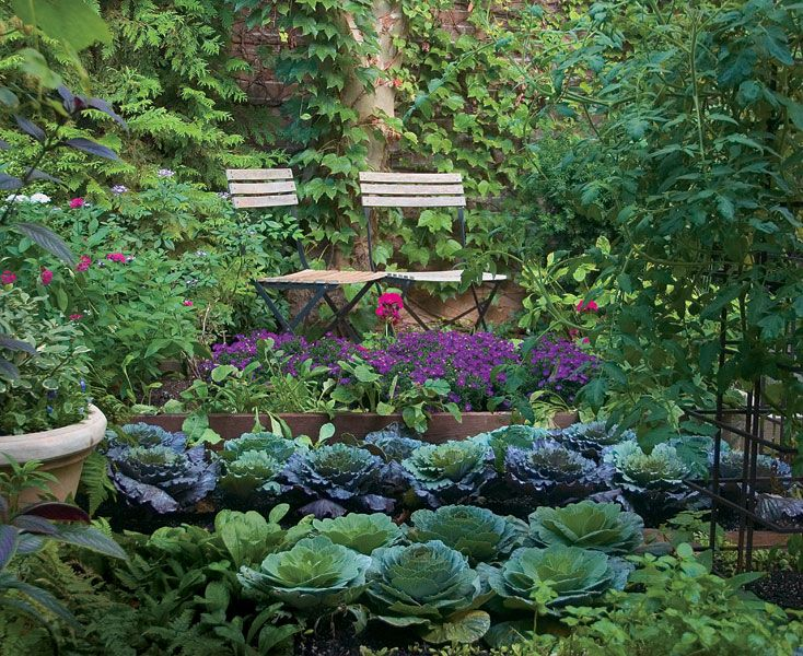Who says a kitchen garden can 39 t be beautiful turn edible for Pretty raised vegetable garden