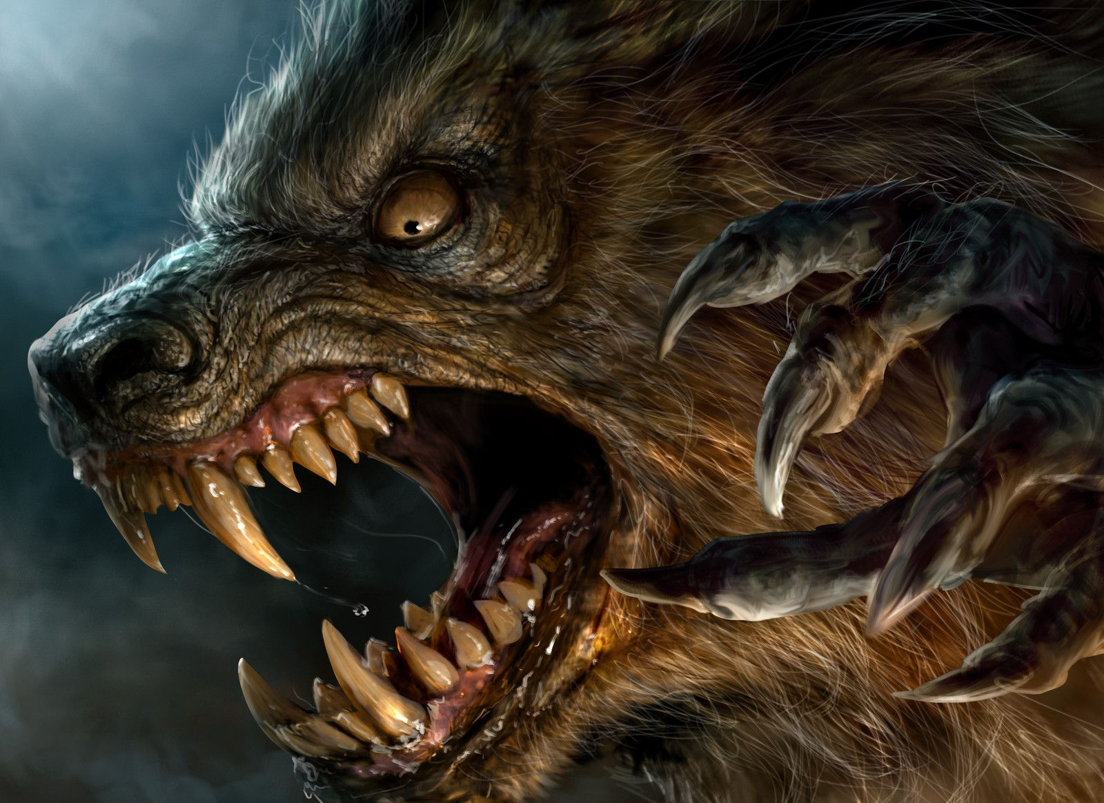 25+ best ideas about Real werewolf on Pinterest | A wolf, Awesome ...