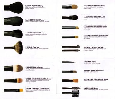 c1100df71d87b1318745af044fb345ed another more complete list of brushes used to apply make up labeled