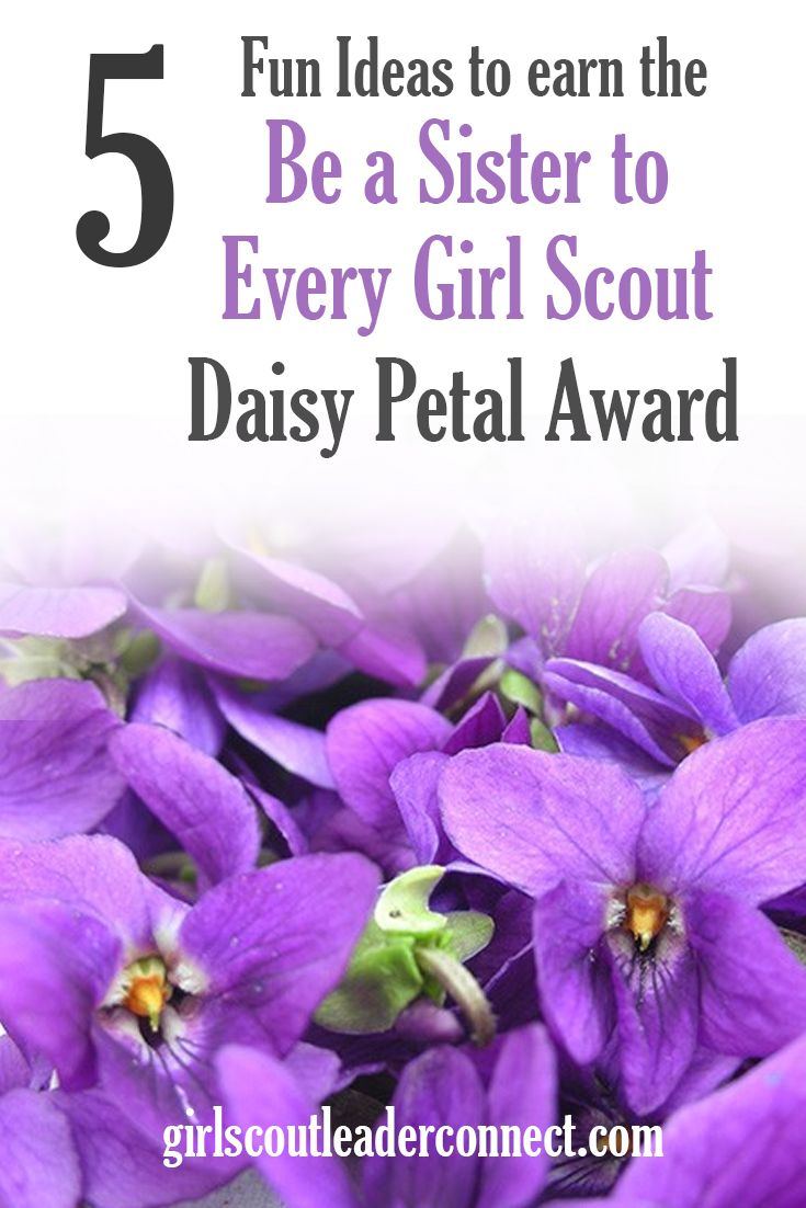 5 fun ideas to earn the daisy be a sister to every girl petal 5 fun ideas to earn the daisy be a sister to every girl petal leader connecting leaders izmirmasajfo