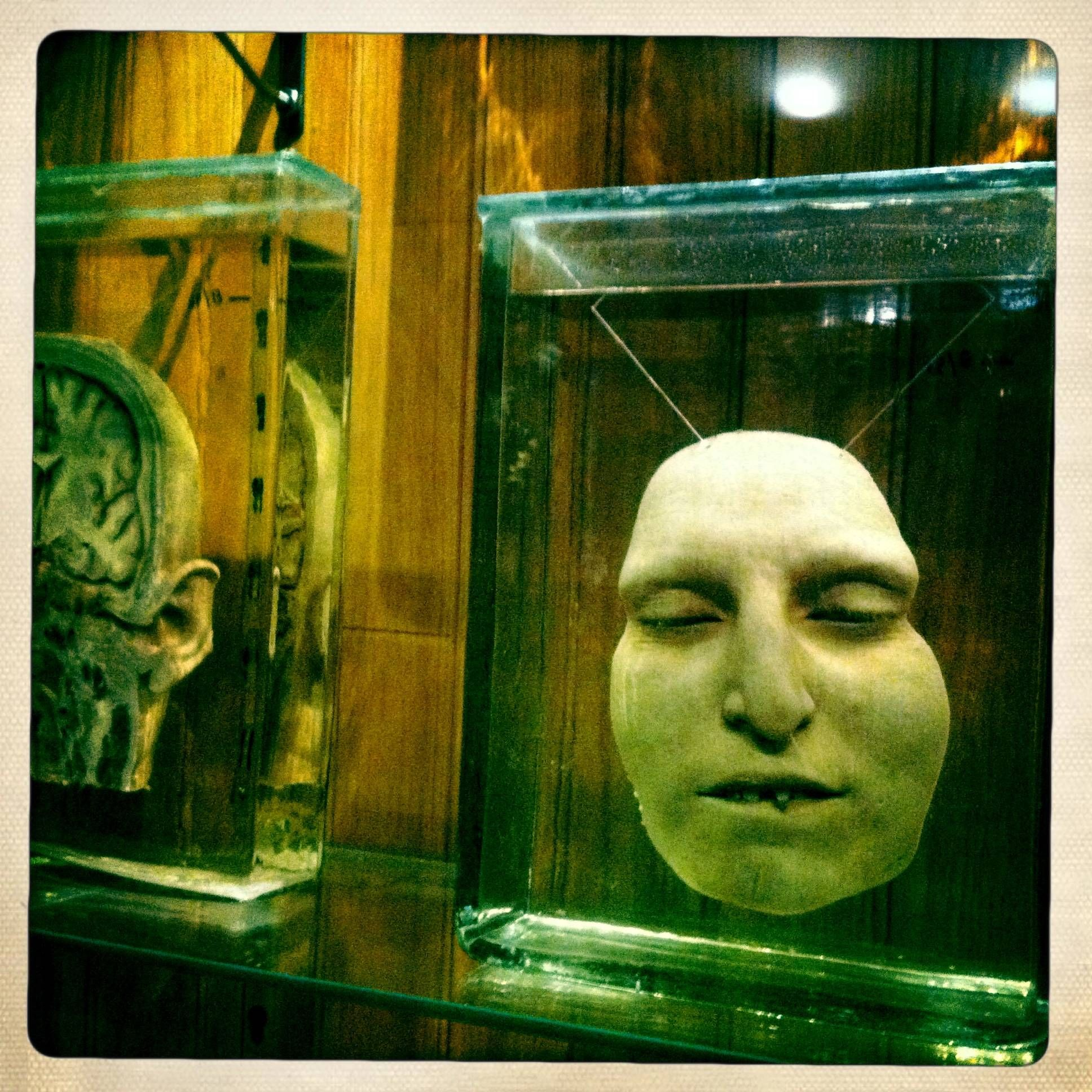 The Mutter Museum. Philadelphia. I\'m so glad this exists. - Album ...