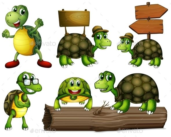 Illustration of the turtles with empty signboards on a white background
