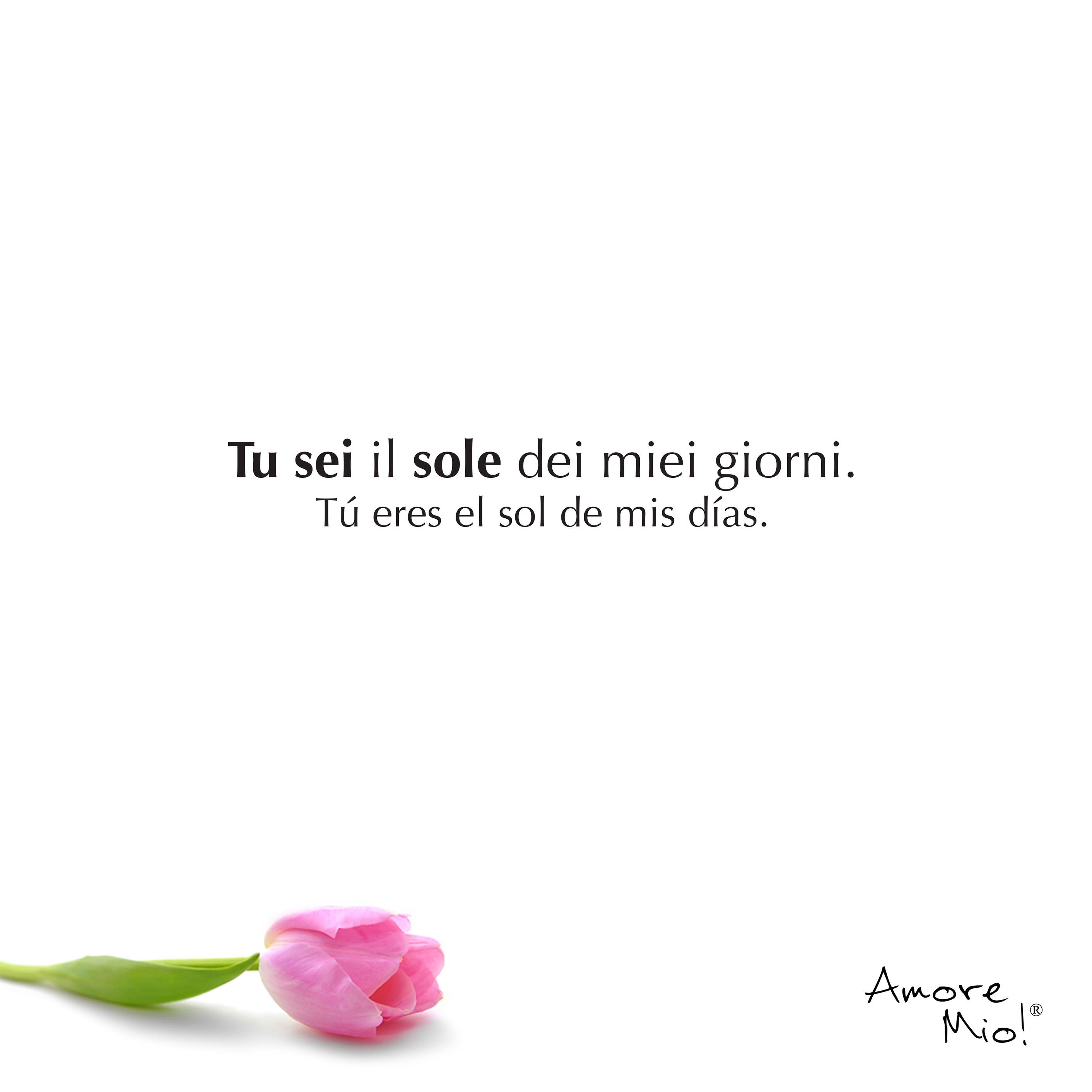 Frases cortas de Amor