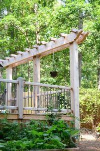 #timber #trellis