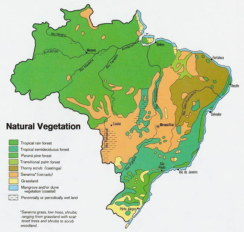 Carte Bresil Climat.Vegetation Map Of Brazil Maps Map South America Map Brazil