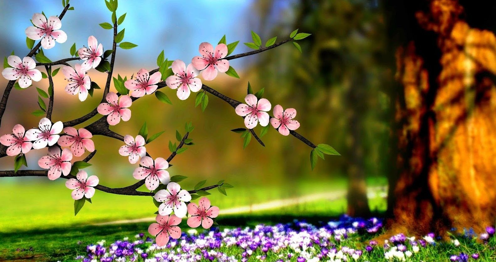 HD Wallpapers Nature Flowers 3d ...