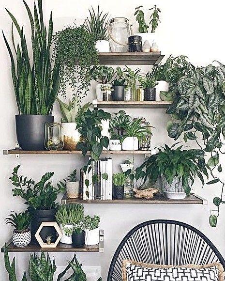 Pflanzen im Büro sorgen für eine gute Laune # Pflanzen # Grün # Büro # Büro... #pflanzenimschlafzimmer