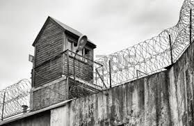 penitentiary barbed wire - Google Search
