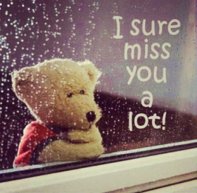 I Sure Miss You A Lot Love Quotes You Miss Sure Instagram