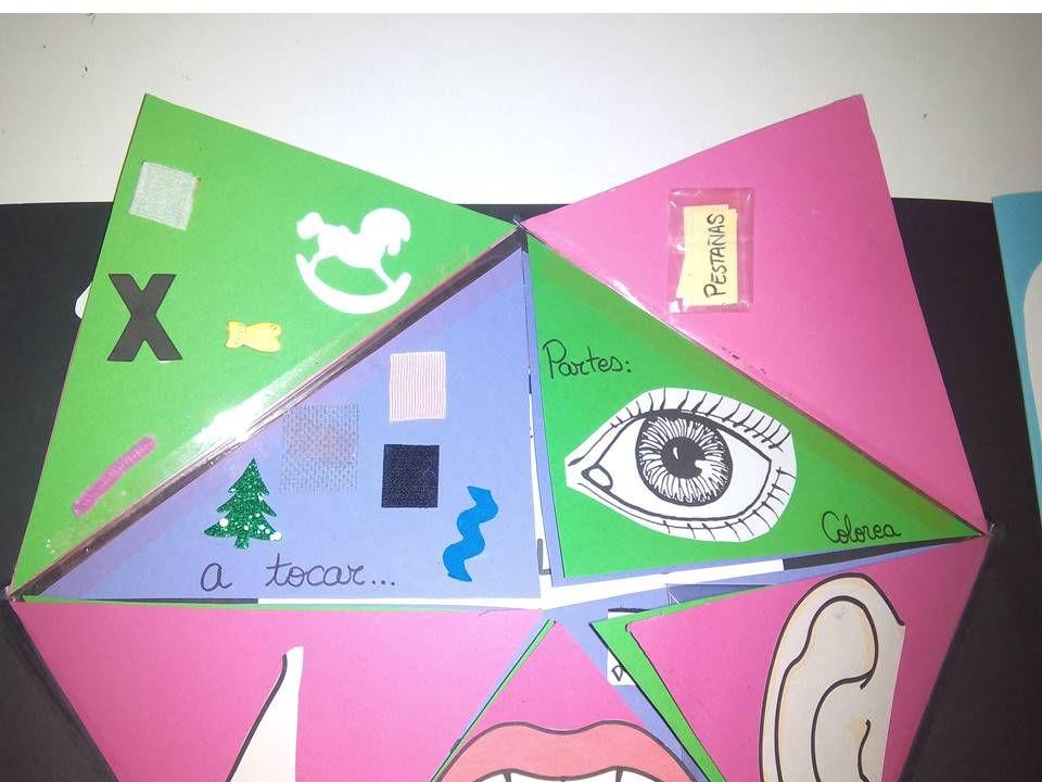 Qué Es Un Lapbook La Definición Literal Es Libro De Etiquetas Y