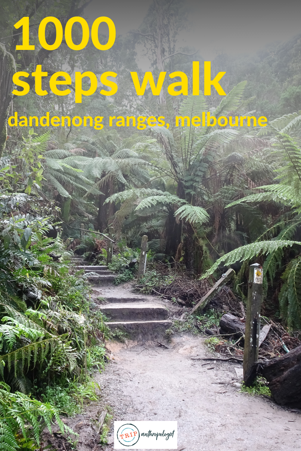 Everything you need to walk the 1000 Steps of the Kokoda Memorial Walking Track in the Dandenong Ranges National Park in Ferntree Gully, Melbourne: how to get there, what to do, when to go and opening times. #melbournetravel #1000steps #dandenongs