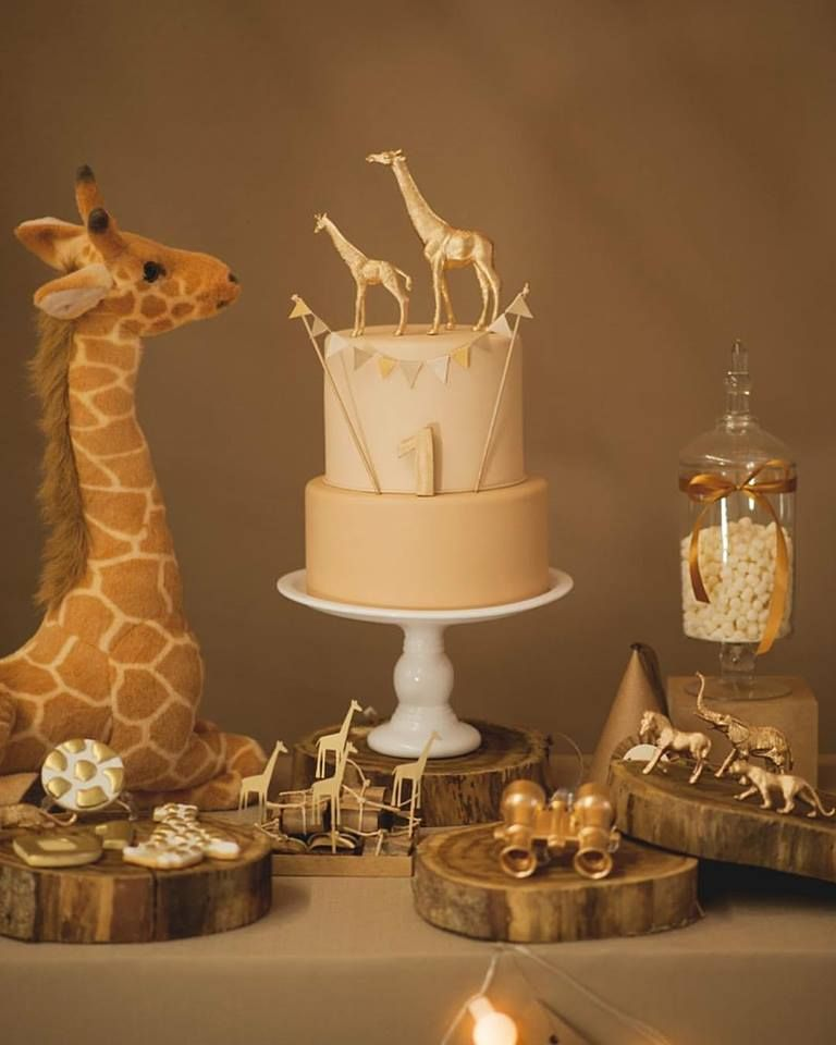 Cookieria By Margaret: Safari para Baby Boy...
