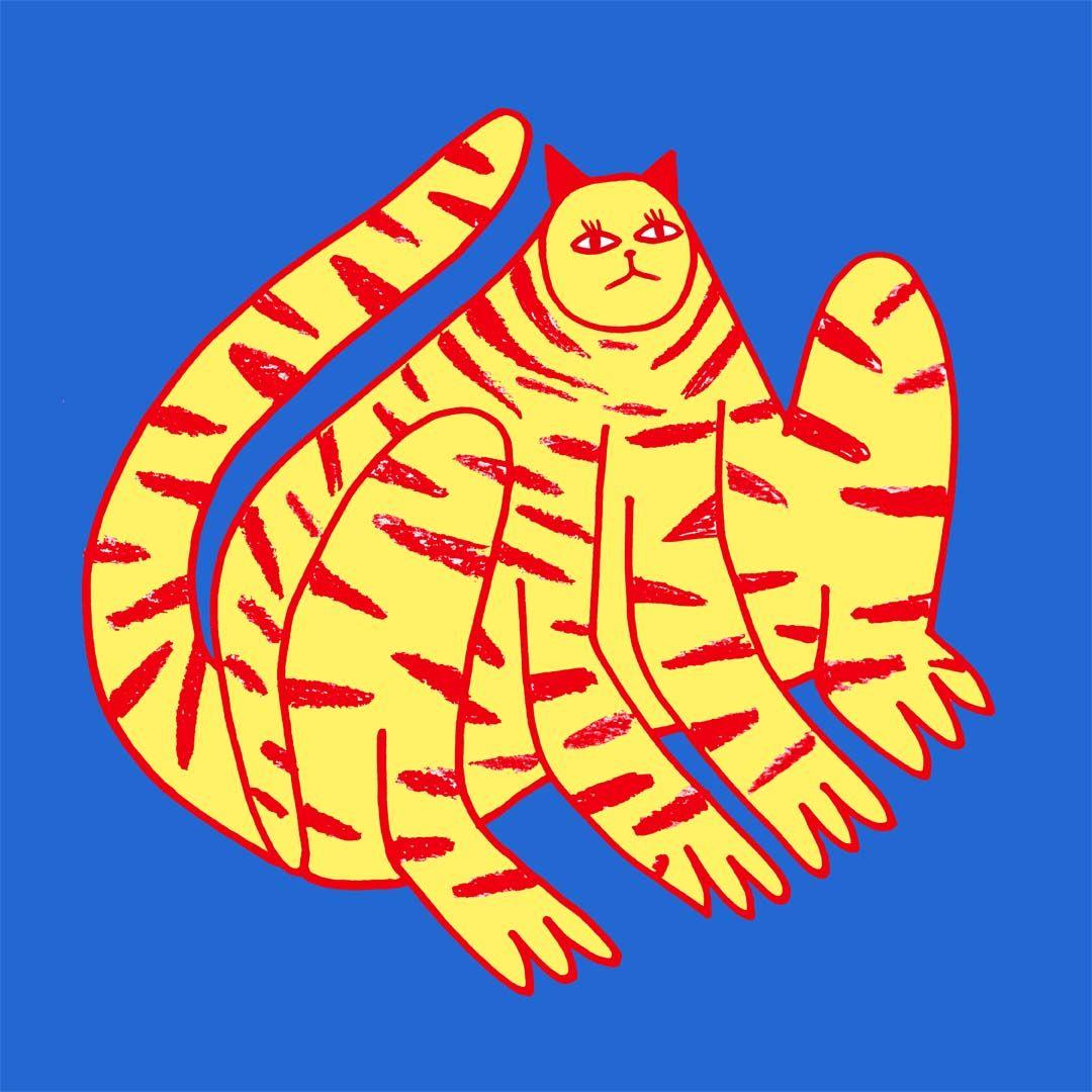 cat art cat design cat illustration Healthy chicken