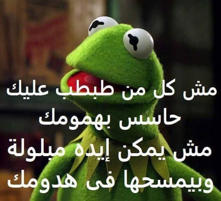 Pin By Adiba N Sukar On Funny Funny Comments Funny Arabic Quotes Jokes Quotes