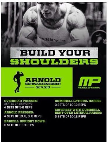 Build your shoulders Fitness Pinterest Shoulder, Workout and - new arnold blueprint ebook